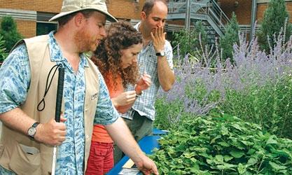 Espace pour la vie - Jardin botanique de Montréal