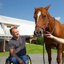 Personnes en fauteuil roulant et un cheval