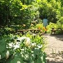 Jardins et tables à pique-nique