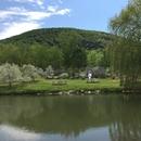 Aire de pique-nique au bord du lac
