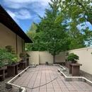 Jardin Bonsaï - Jardin Japonais
